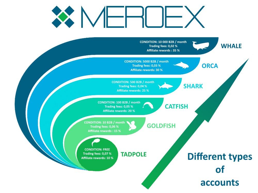 Les comptes de trading Meroex
